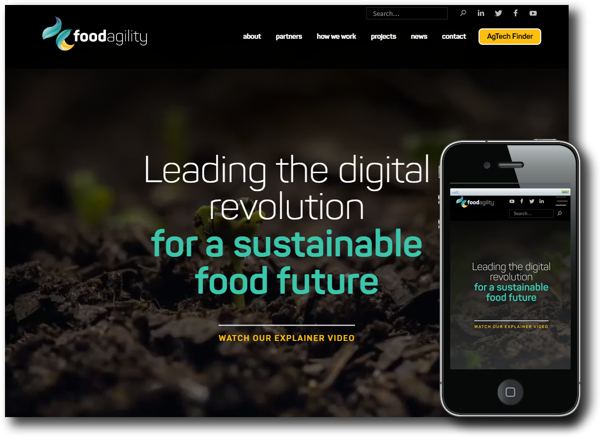Food Agility webflow website development, SEO, CMS