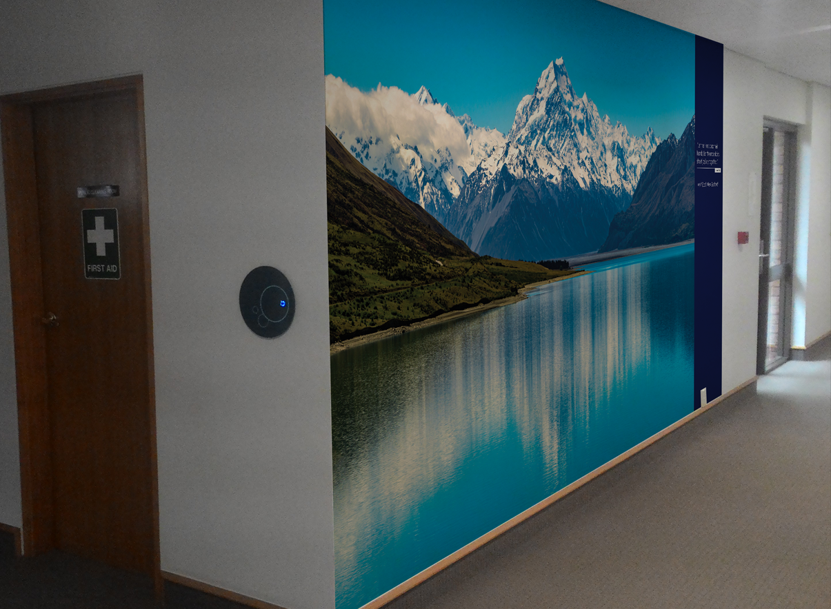 Large Scale wall murals for office hallway